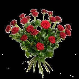 24 st vackra, röda rosor i en härlig bukett.