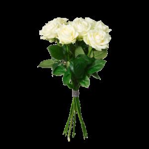 Bukett med fem vackra, vita rosor.