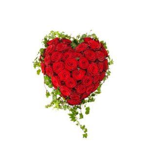 Begravningshjärta fyllt med stora, röda rosor, inramade av en kant av murgröna. Begravningshjärtat finns att beställa hos Interflora, som har lång erfarenhet av att skicka blommogram direkt till begravningar.