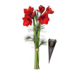 Bukett med snittamaryllis (röd), tall och en strut choklad. Blombuketten med chokladstruten finns att beställa som blomsterbud hos Interflora.