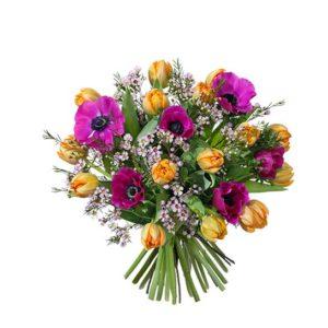 Färgstark bukett med tulpaner, anemonser och vaxblommor. Blommorna finns hos Interflora.