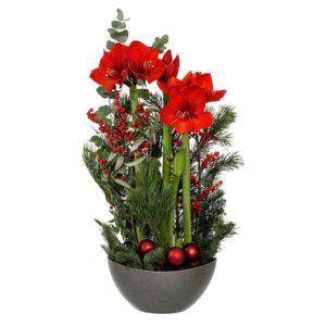 """Julgruppen """"Juletid"""", med amaryllis, röda bär och dekorationsgrönt samt röda julkulor. Ur Interfloras julsortiment."""