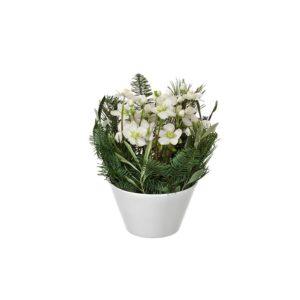Vit julros i vit kruka tillsammans med dekorationsgrönt. Ur Interfloras julsortiment.