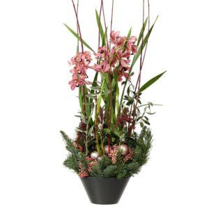 Plantering i kruka, med vinröda orkidéer, rosépeppar, julkulor och grönt. Ett jularrangemang från Interflora. Skicka blommorna med ett blombud och önska God Jul!