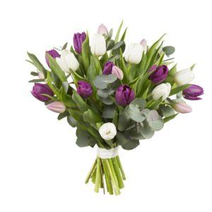 Bukett med lila och vita tulpaner och grönt. Ur Interfloras sortiment.