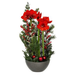 Klassisk julgrupp med röd amaruyllis, ilexbär, grönt och röda julkulor. Skicka julblomman med bud från Interflora och gör någon riktigt juleglad!